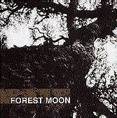 Forest Moon, by Jerome Arthur and Greg Gordon