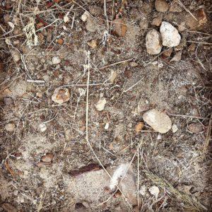 African Soil